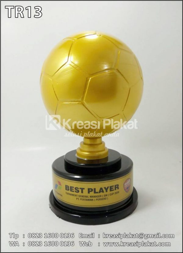 Trophy Best Player