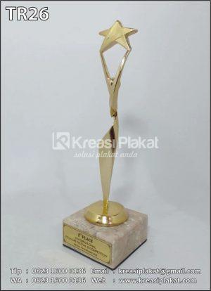 Plakat Award Model Bin...