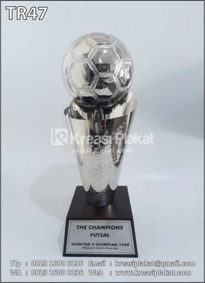 Trophy The Champions F...