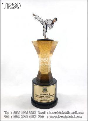 Piala Kejuaraan Taekwo...